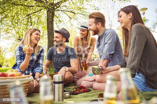 istock Having the perfect picnic 523055700