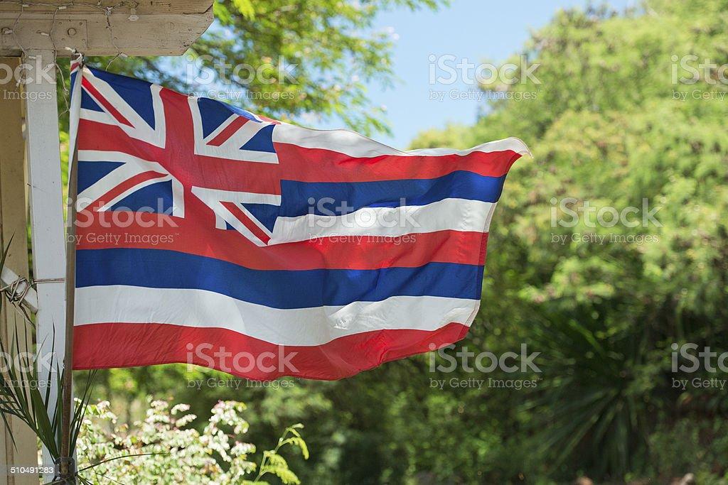 Bandeira Hawaian e tecelagem - foto de acervo