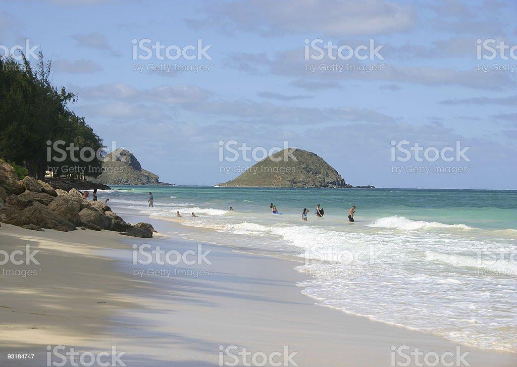 Hawaii Beach royalty-free stock photo