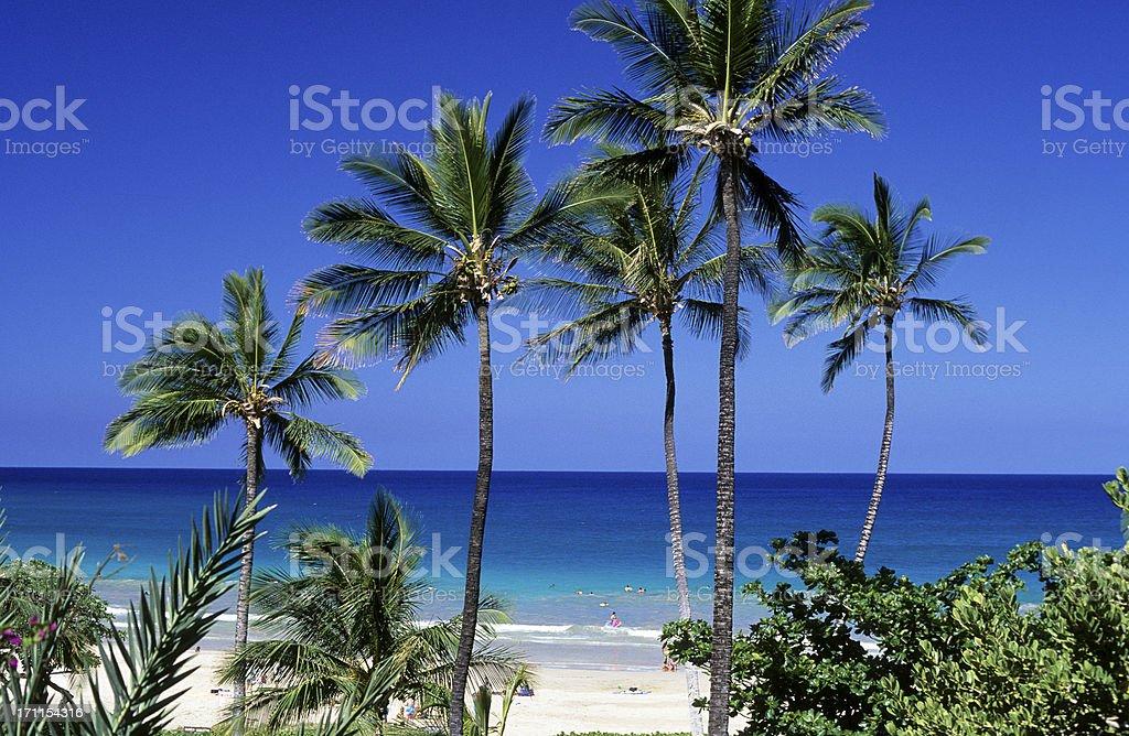USA Hawaii, Big Island, Hapuna Beach. royalty-free stock photo