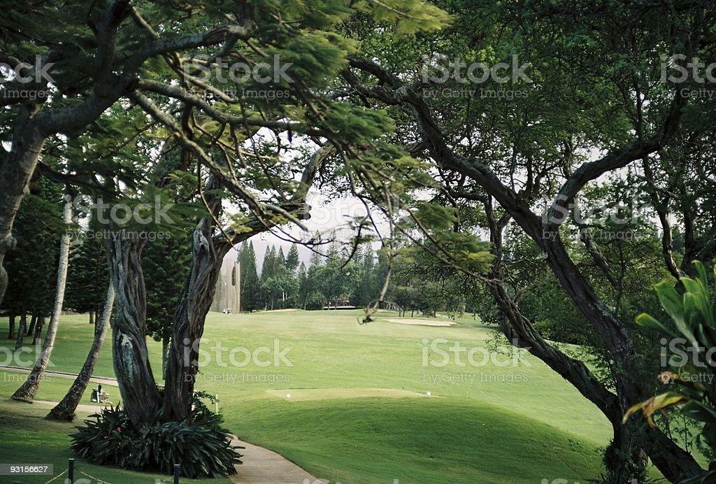 Hawaii golf hole royalty-free stock photo