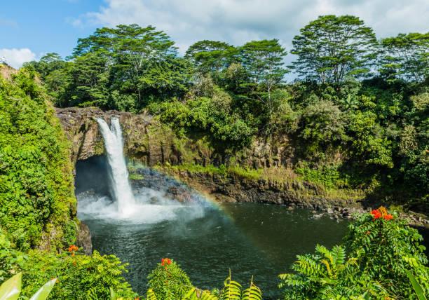 Hawaii, Hilo. – Foto