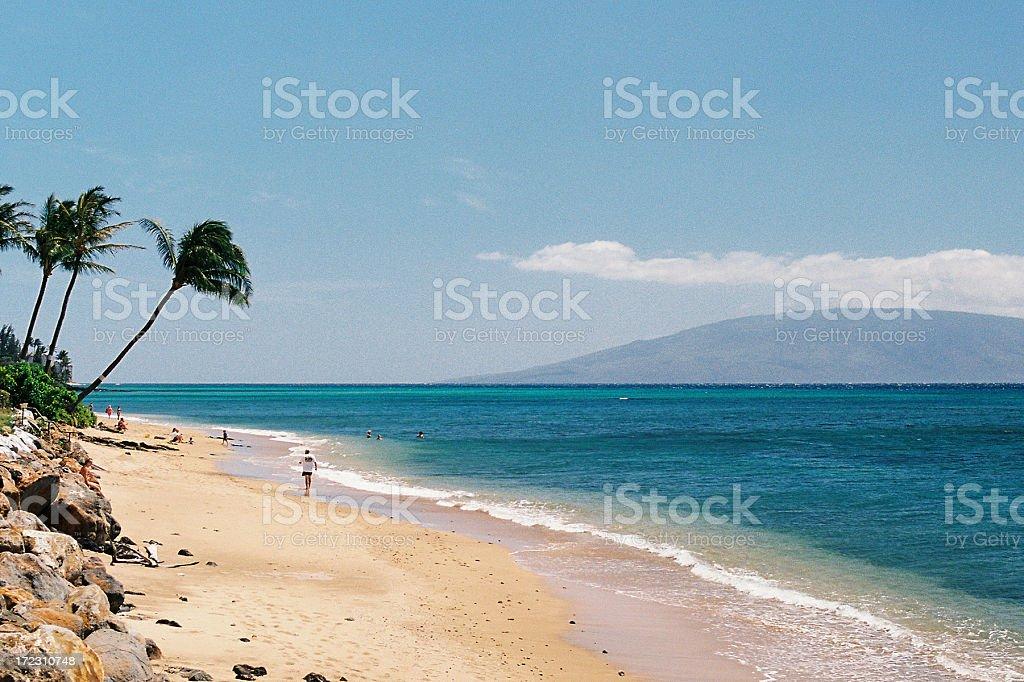 Hawaii Jogger on tropical beach stock photo