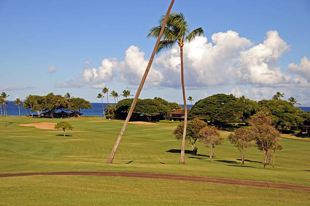 hawaii kaanapali - patrick hutter stock-fotos und bilder