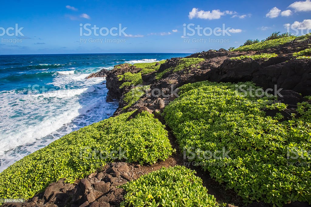 Hawaii landscape with clouds and trees stock photo