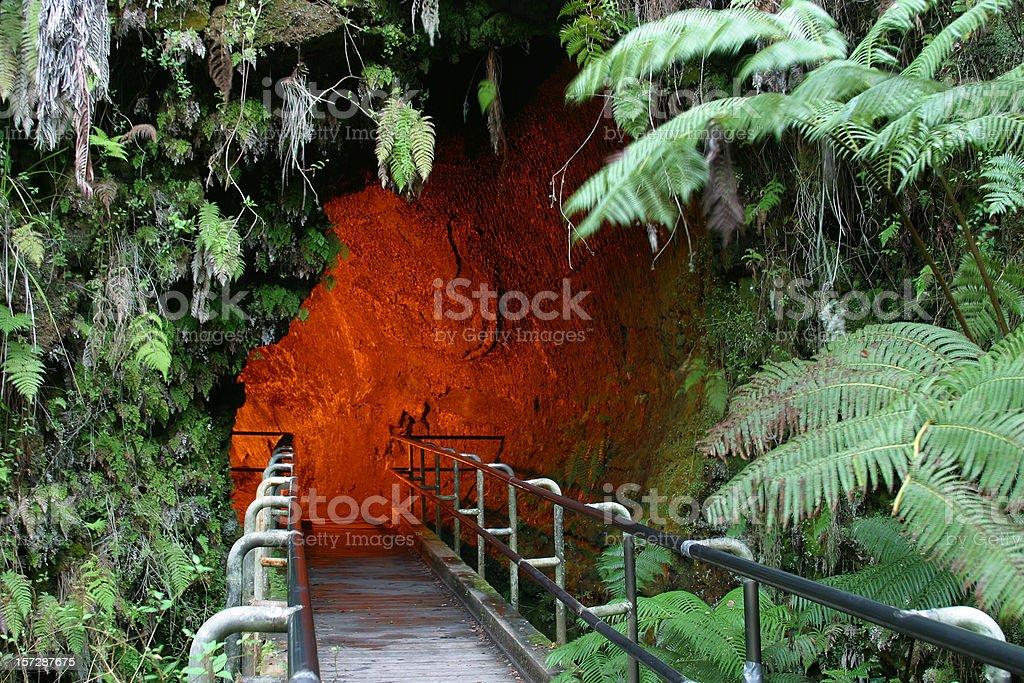 Hawaii Lava Tube royalty-free stock photo