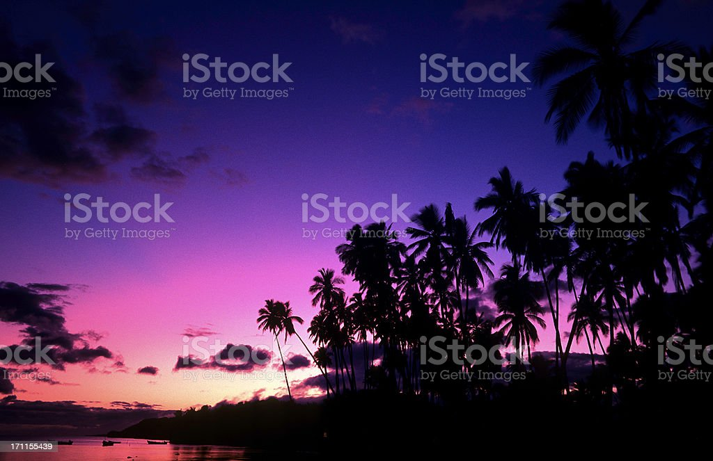 USA Hawaii Molokai, Kapua'iwa Coconut Grove. stock photo