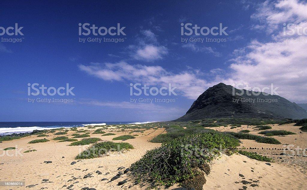 USA Hawaii O'ahu, North Shore, Ka'ena Point. royalty-free stock photo