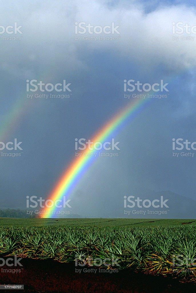 USA Hawaii O'ahu, North Shore, Rainbow. stock photo