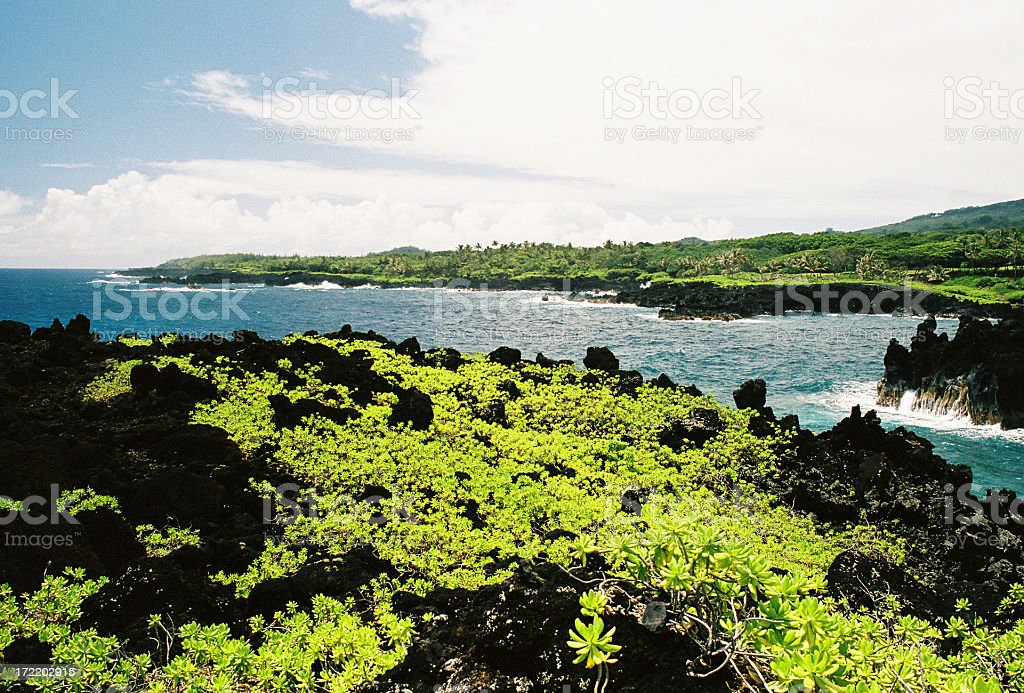 Hawaii oceanfront lava scenic stock photo