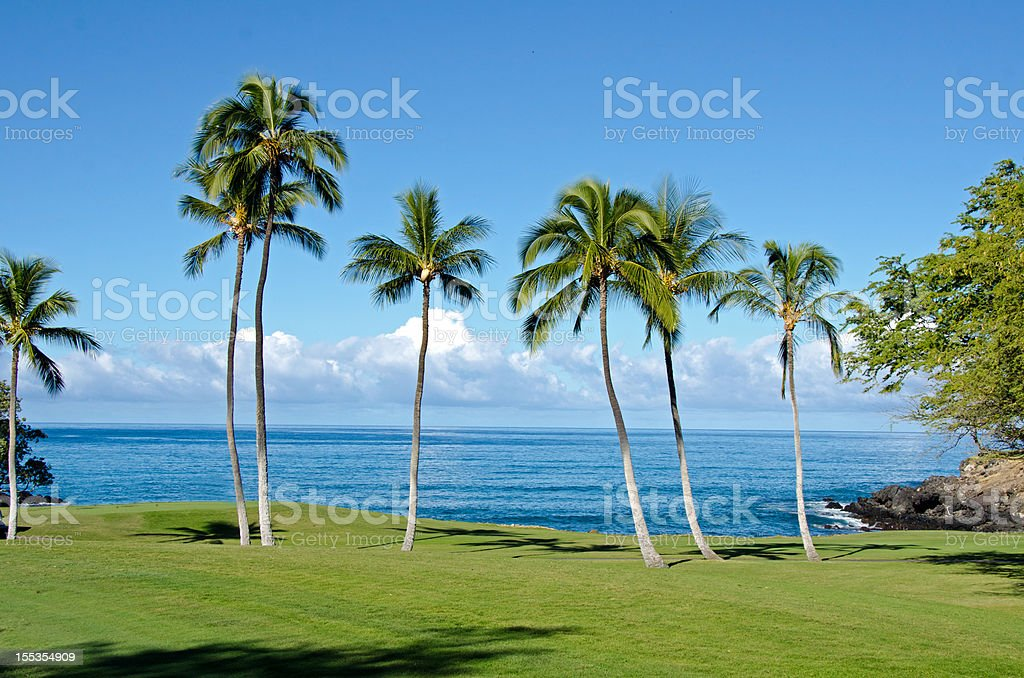 Hawaii Oceanside Golf Fairway stock photo
