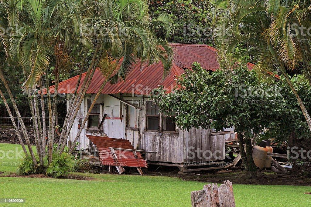 Hawaii old abandones shack stock photo