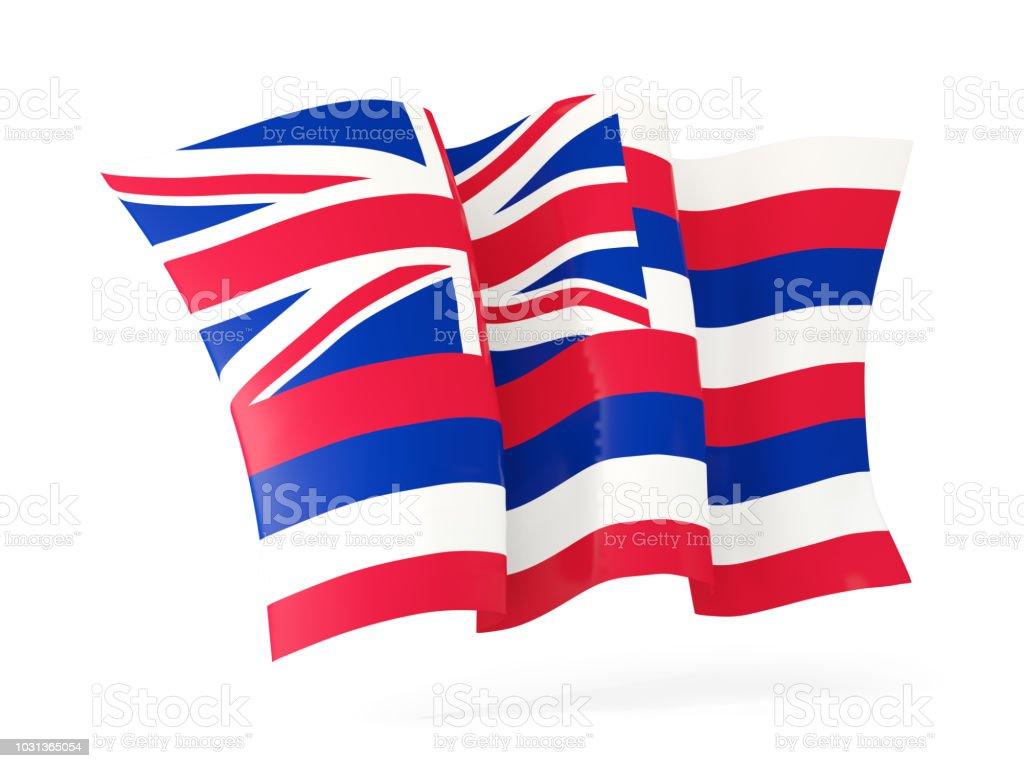 Havaí estado bandeira agitando ícone close-up. Bandeiras de locais dos Estados Unidos - foto de acervo