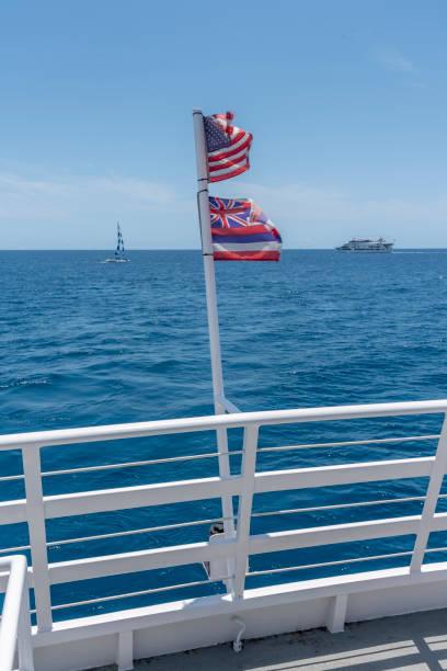 Hawaiian and American flags - foto stock