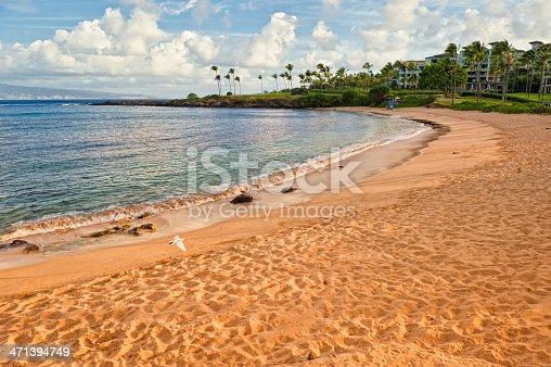 a hawaiian beach / little slice of paradise / dove is a bonus