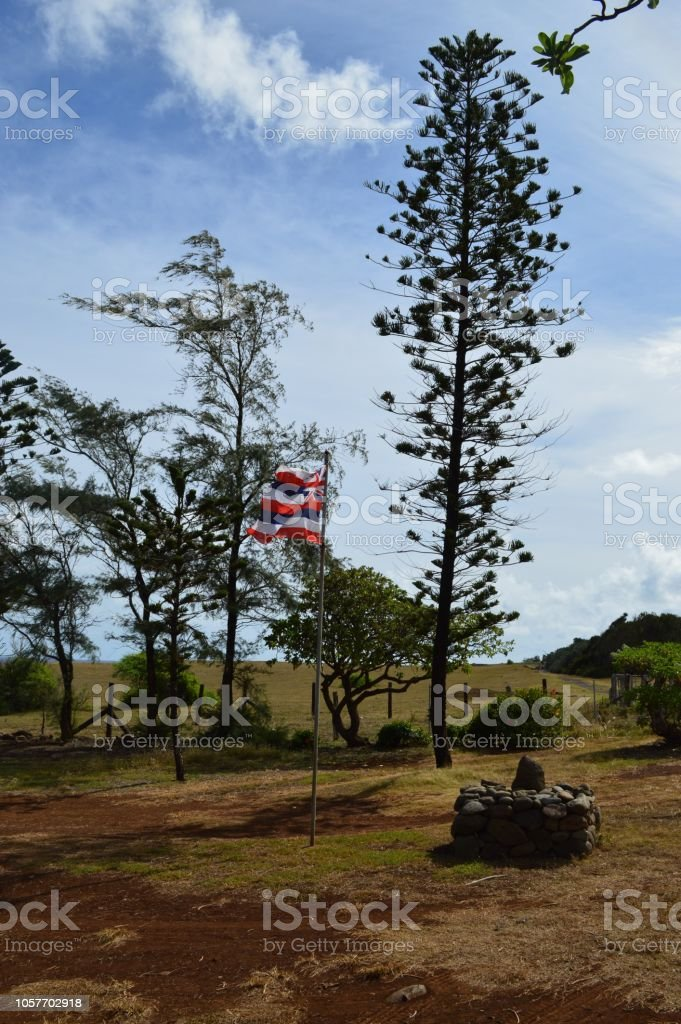 Bandeira havaianas - foto de acervo
