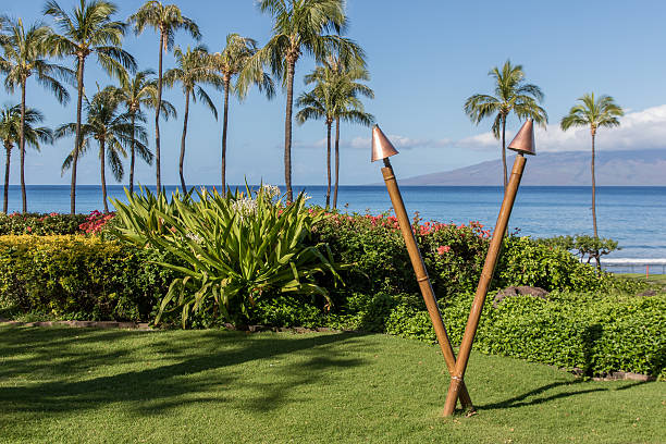 Hawaiian garden torch on the beach, daylight stock photo