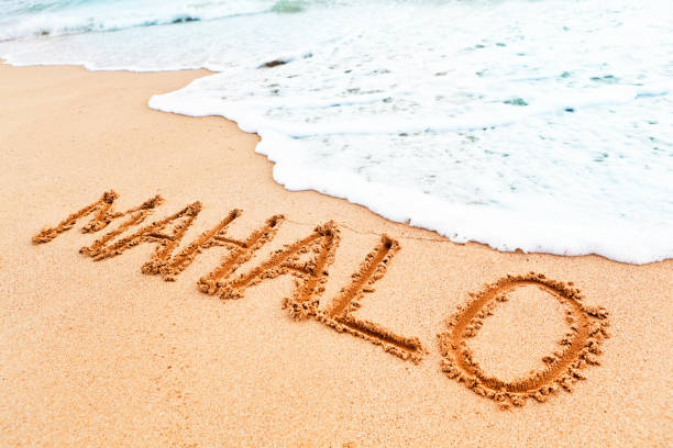 Mahalo Stock Photos, Pictures & Royalty-Free Images - iStock