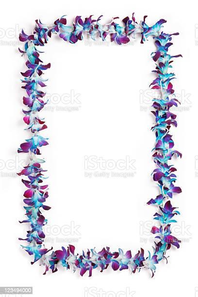 Hawaiian lei border picture id123494000?b=1&k=6&m=123494000&s=612x612&h=r3joxqb55ytjzqf398burk5fbpgo 295qj7h1yki6zc=