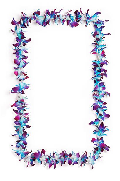 Collier de fleurs hawaïen frontière - Photo