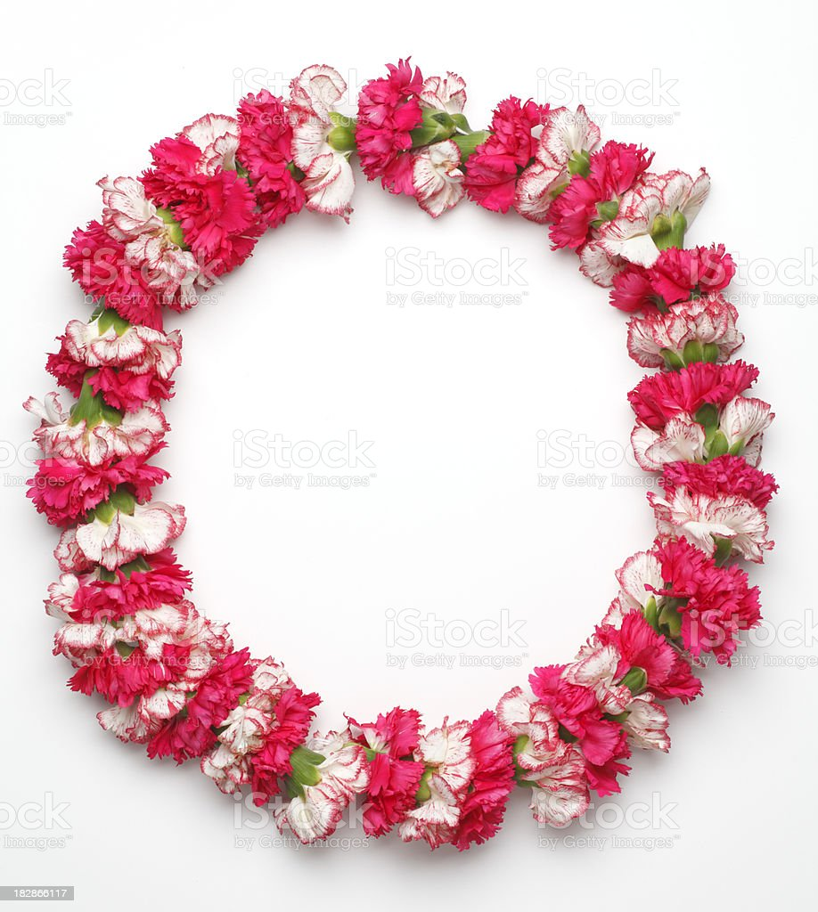 Hawaiian Lei royalty-free stock photo