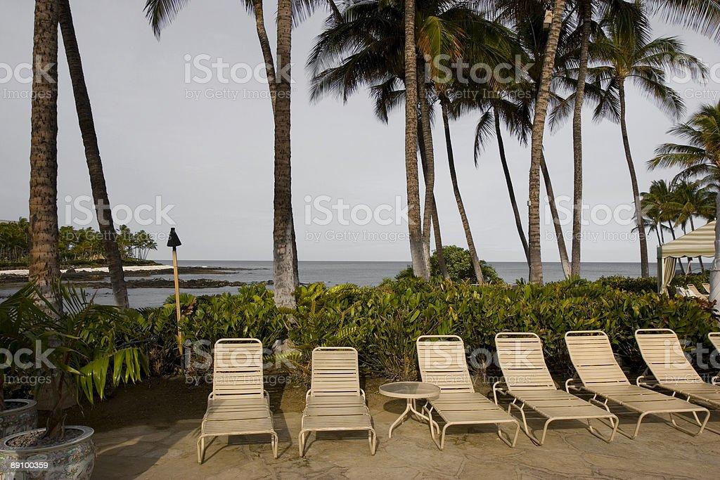 Hawaiian Relaxation royalty-free stock photo