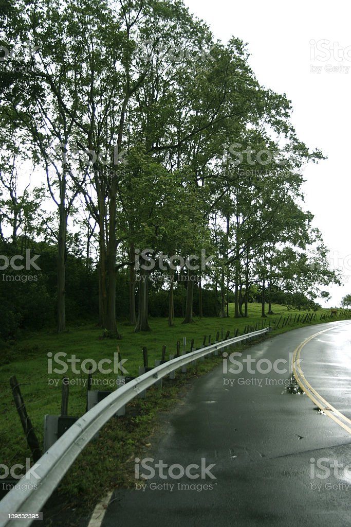 Hawaiian Road stock photo