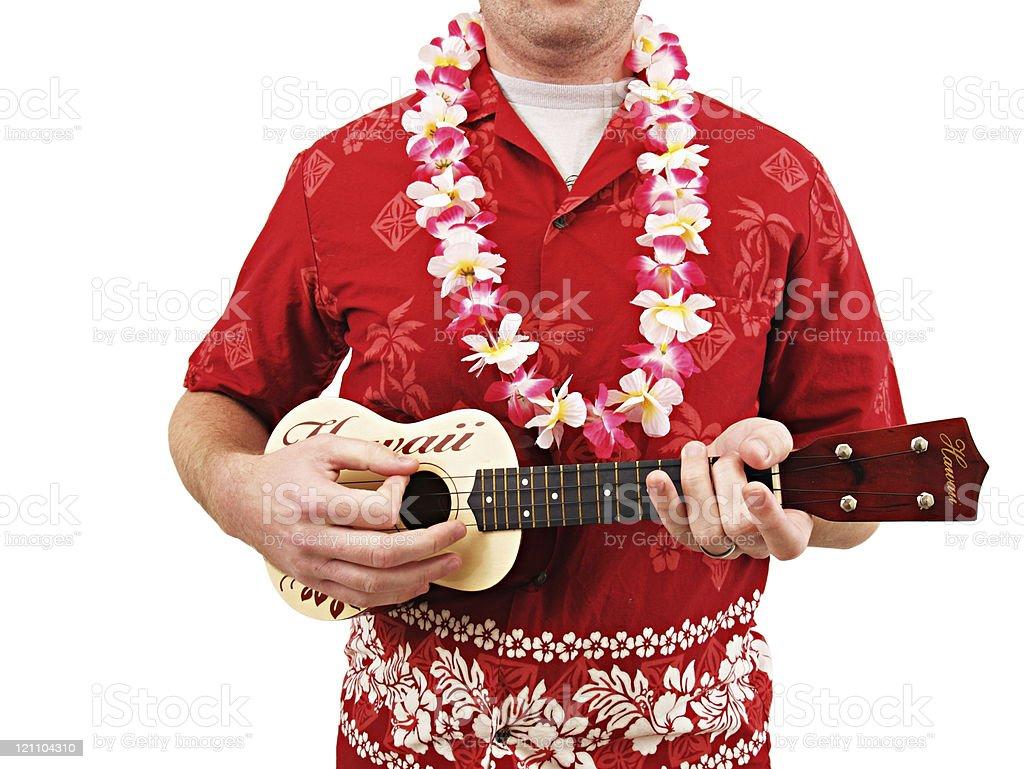 Hawaiian Shirt Lei and Ukulele stock photo