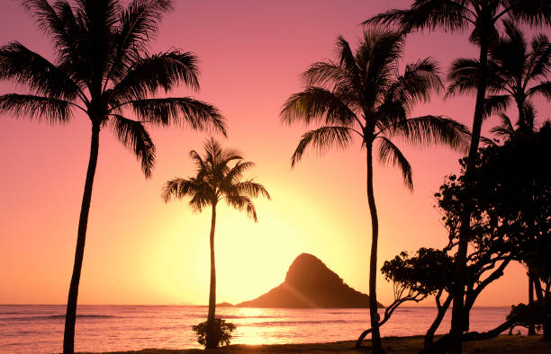 Hawaiian Sunrise stock photo