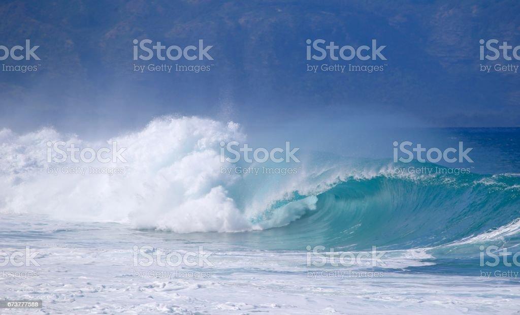 Hawaiian Winter Waves royalty-free stock photo