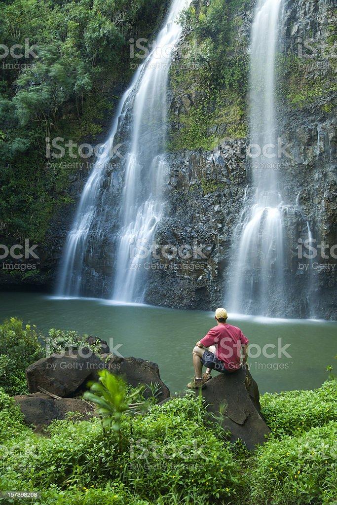 Hawaii's Opaeka'a Falls on Kauai. stock photo