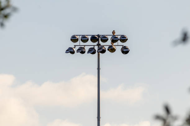 Hawk looking for food on top of a sports field lighting system stock photo
