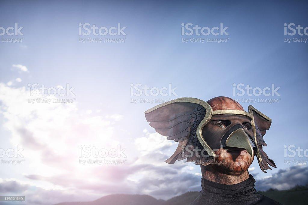 Hawkman Superhero royalty-free stock photo