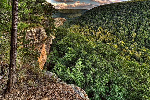Hawksbill Crag/Whitaker Point One of the most photographed land features in the Ozarks, Whitaker Point.  Valleys and peaks of the Ozarks surround you with rugged wilderness. outcrop stock pictures, royalty-free photos & images