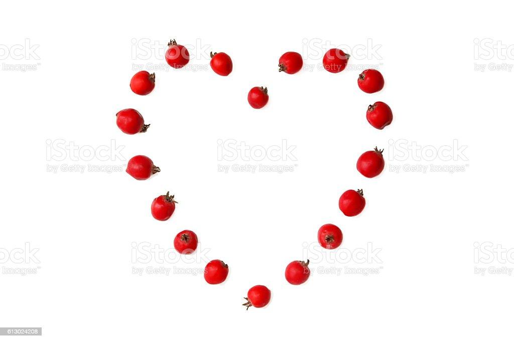 Hawthorn berries in heart shape stock photo