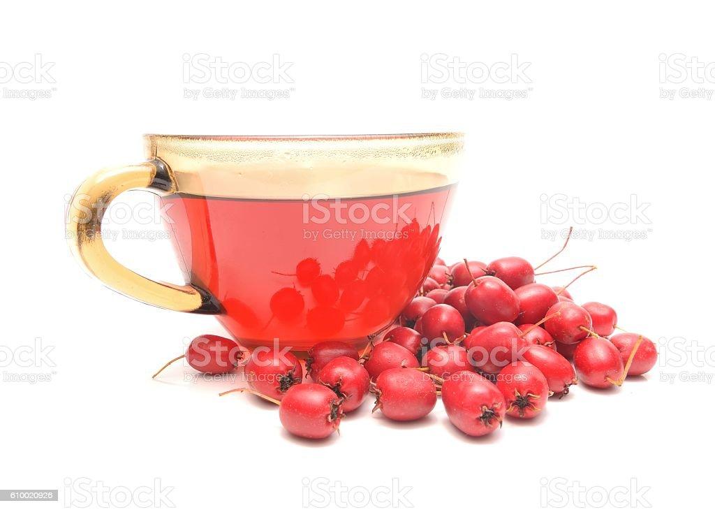 Hawthorn tea and ripe fruits of hawthorn stock photo