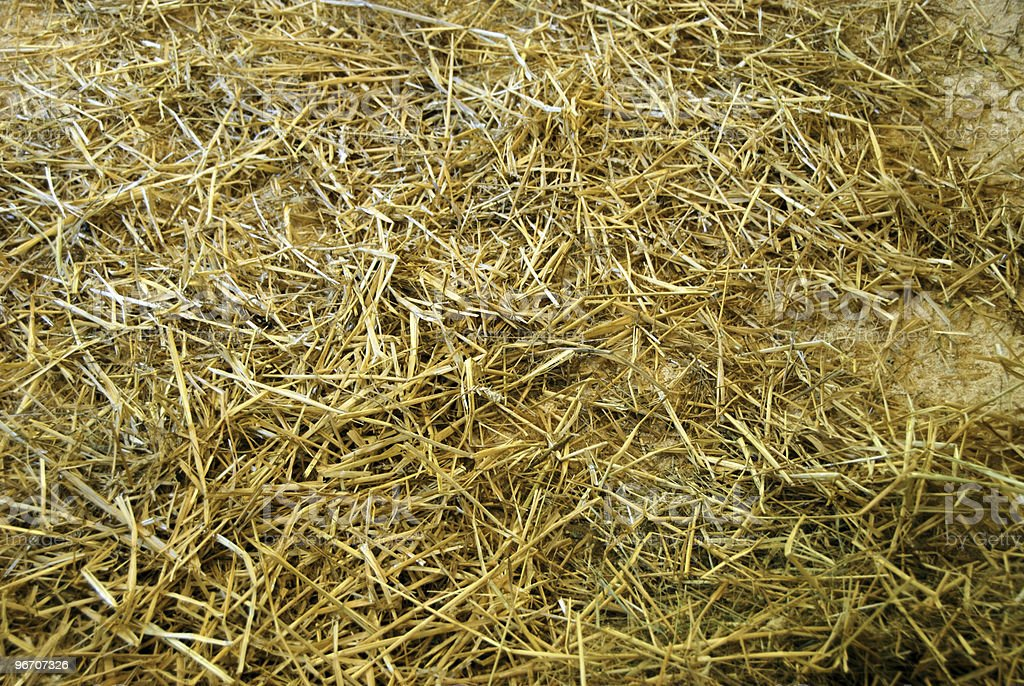 hay and straw royalty-free stock photo