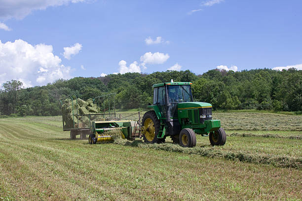 Hay Bailing stock photo