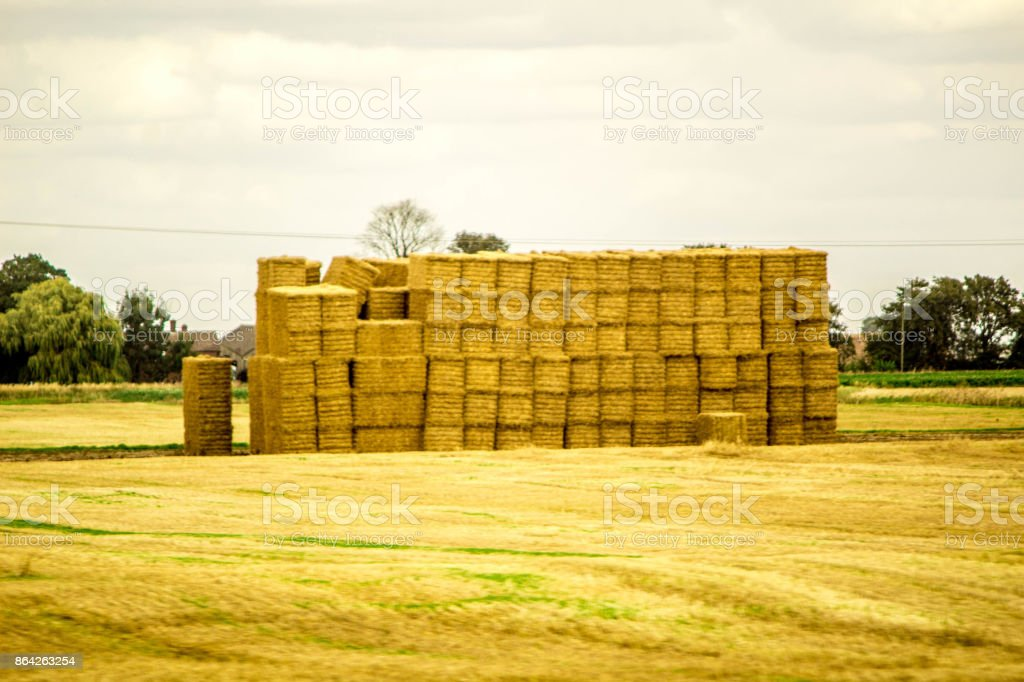 Hay Bails royalty-free stock photo