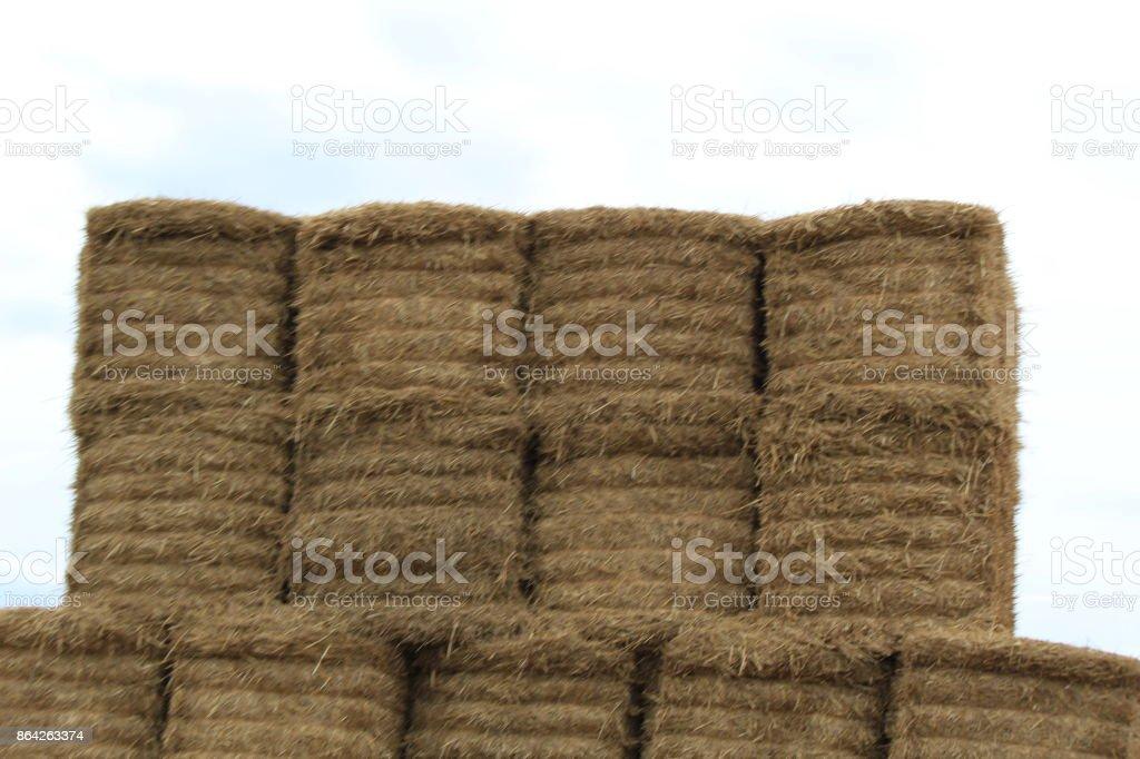 Hay Bails royalty-free stock photo