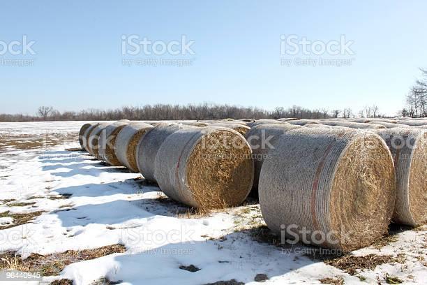 Foto de Hay Bails Com Neve e mais fotos de stock de Agricultura