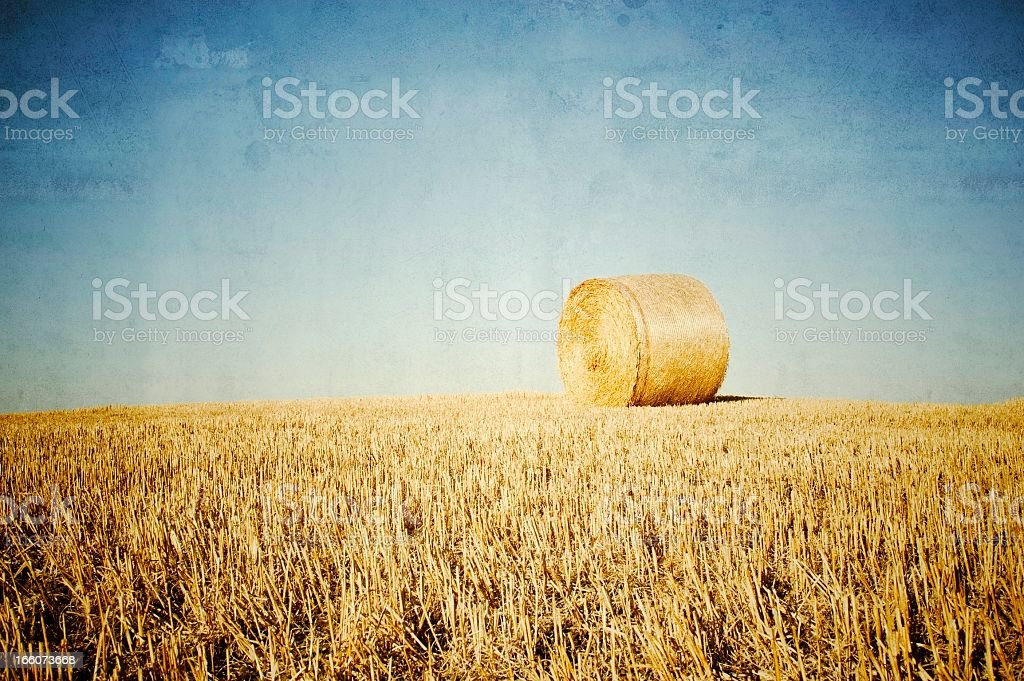 Hay Bale In The Field, Tuscany royalty-free stock photo