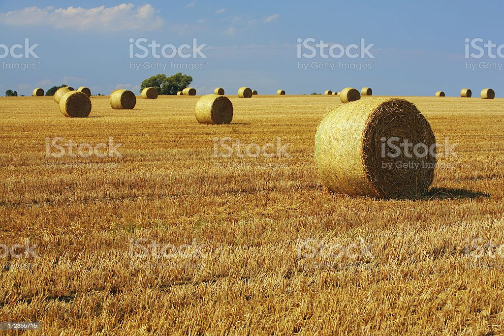 Hay Bale Landscape royalty-free stock photo