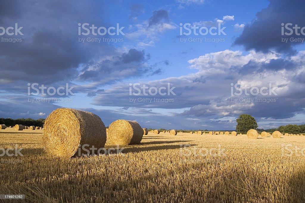Hay Bale Landscape royalty-free stock photo