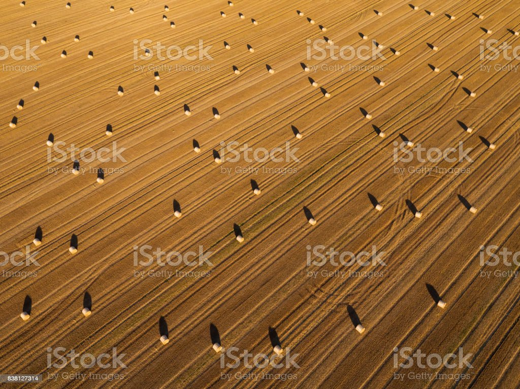 Hay bale on grainfield from above, Germany stock photo