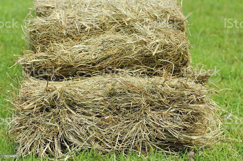 Hay Bale, Opened royalty-free stock photo