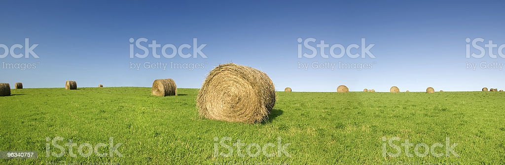 Hay Bale Panorama royalty-free stock photo