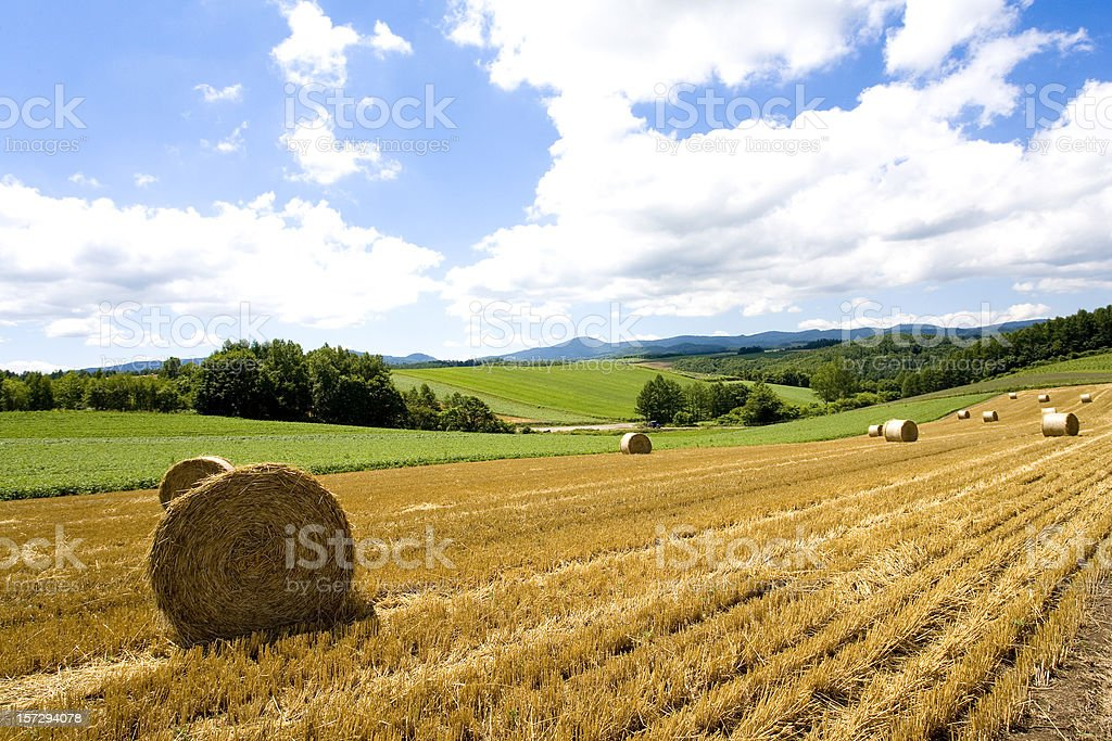 Hay Bale Scenery royalty-free stock photo