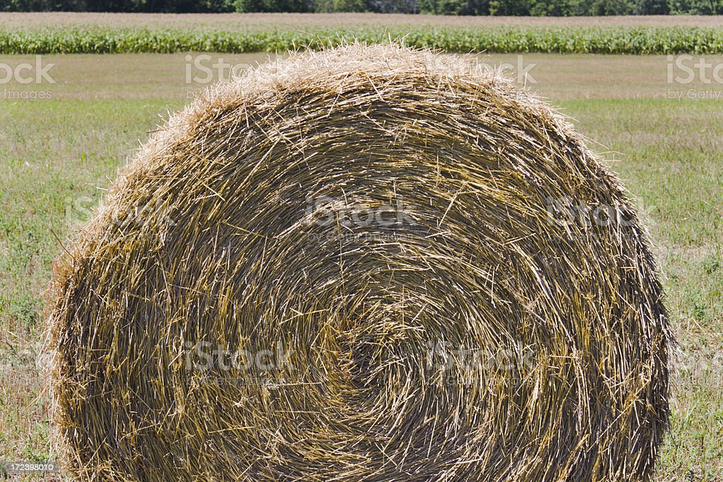 Hay Bale Spiral royalty-free stock photo