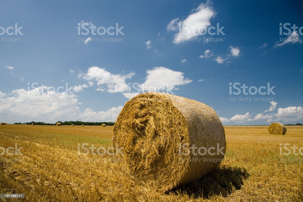 Hay Bale Stubble Field royalty-free stock photo